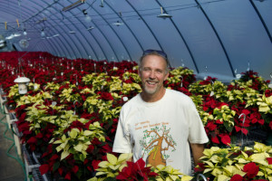 Joe Stead, Horticulture Lab Coordinator, is enthusiastic about the sea of Freedom White and Red Poinsettias and other varieties of poinsettias nurtured by horitculture students. The popular Orange Coast College poinsettia sale will be held on Dec. 11 from 10 am - 3 pm.     //ADDITIONAL INFO: This is for a slide show to go with column about Orange Coast College's poinsettia program.    hairstylists.1207.cy CINDY YAMANAKA, THE ORANGE COUNTY REGISTER - CQ's