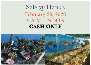 Sale at Hank's